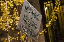 Manifestación 14-N en imágenes