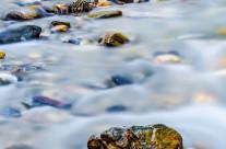 Agua fresquita