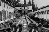 Agua en el jardín