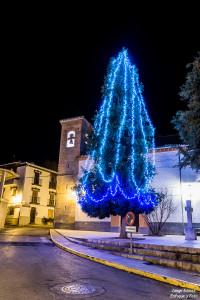 pinos genil luces de navidad nikon d750 enfoque y foto para facebook