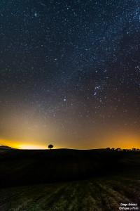 arbol nocturna estrellas quedadas nikon d750 samyang 14 enfoqeu y foto para facebook