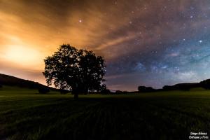 Vía Láctea arbol la venta enfoque y foto para facebook