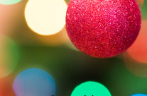 Felices fiestas 2016 – 2017