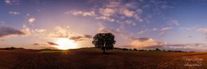 panoramica amanecer agron encina
